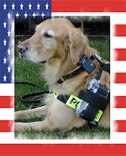 K 9 Golden Retriever Handler Jason Lovett
